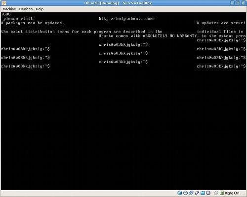 Kubuntu terminal